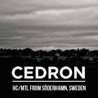 "Cedron и Redound ще свирят в ""Swingin' Hall"" - all ages!"