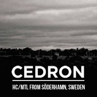 "Cedron и Redound ще свирят в ""Swingin' Hall"" - all ages!"